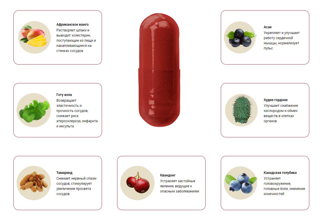 состав микардина