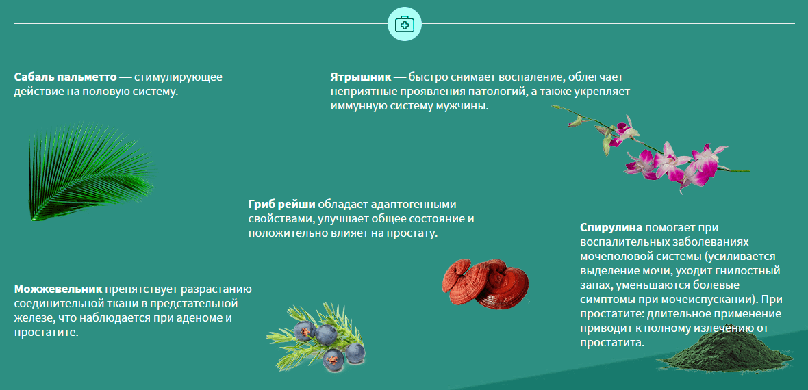 уромин состав препарата